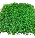 All Season Premium Artificial Turf Grass - Synthetic Grass With Real Look & Feel - Perfect For Backyards & Commercial Areas (15' x 13')