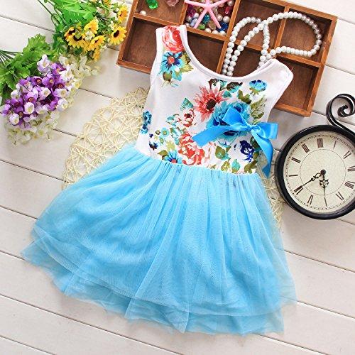 Kids Girls Princess Rose Garden Flower Petal Lace Ruffled Tulle Skirts Dresses 4T/3-4 Years Blue