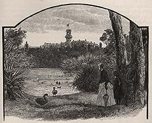 Amazon Com Government House From Botanical Gardens