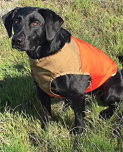 Orvis Cuga Dog Vest, Tan/Blaze, Medium by Orvis