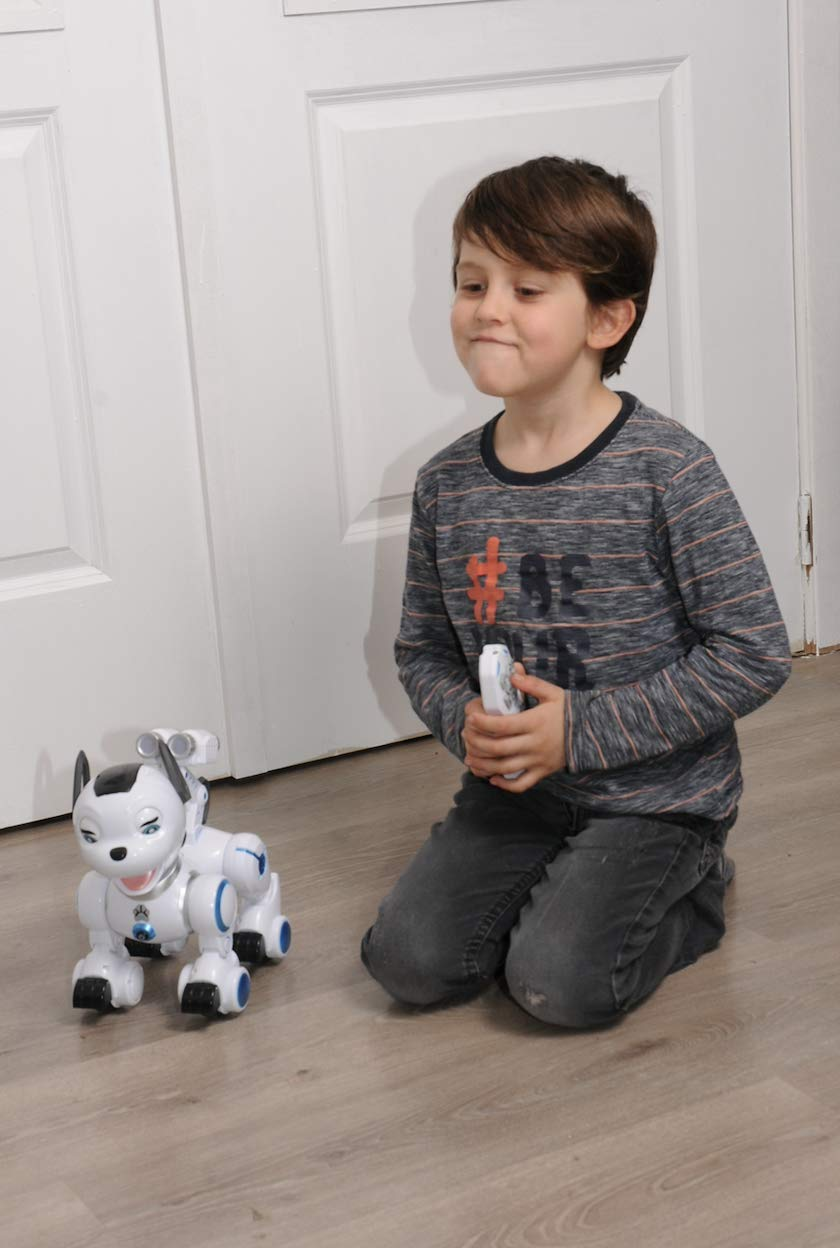 Bsmart toys Intelligent Hi-Tech Wireless Robot Dog ,Remote Control Educational Puppy Pet Best Birthday Gift for 5,6,7,8,9 Years Boys and Girls Interactive Robotic Friend by Bsmart toys (Image #6)