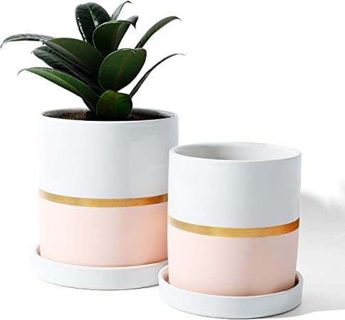 Amazon Com Potey 052003 Cylinder Ceramic Plant Pot 4 9 3 9 Inch Planters With Pink Golden Detailing For Indoor Plants Flower Succulent With Drainage Hole Saucer Set Of 2 Garden Outdoor