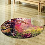 Farm House Decor Circle carpet by Nalahomeqq Fairy Majestic Landscape with Autumn Trees in Forest Natural Garden in Ukraine Room Accessories Extralong Red Green Brown-Diameter 70cm(28'')