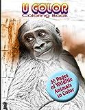 U Color, Harry Hallman, 1492386715