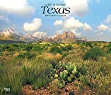 Texas, Wild & Scenic 2019 12 x 14 Inch Monthly Deluxe Wall Calendar, USA United States of America Southwest State Nature (Multilingual Edition)