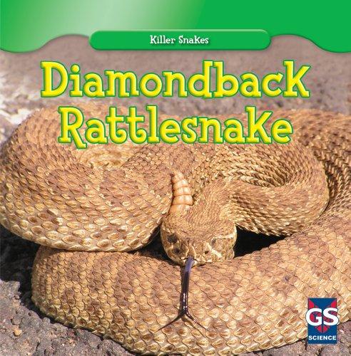 Diamondback Rattlesnake (Killer Snakes) ()