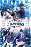 MLB: 2016 World Series Celebration Poster 24 x 36in