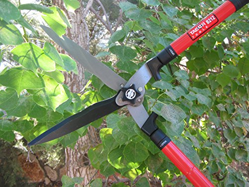 TABOR TOOLS Extendable Hedge Shears for Trimming Borders, Boxwood, Decorative Grasses, and Bushes. Hedge Clippers with Professional Wavy Blade and Long 25