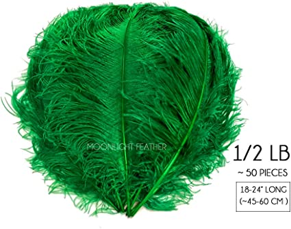 """10 Pieces 18-24/"""" Kelly Green Huge Ostrich Wing Plumes Centerpiece Feathers"""