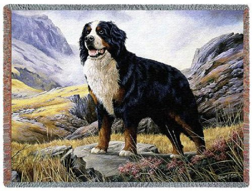 Pure Country 1935-T Bernese Mountain Dog Pet Blanket, Various Blended Colorways, 53 by 70-Inch