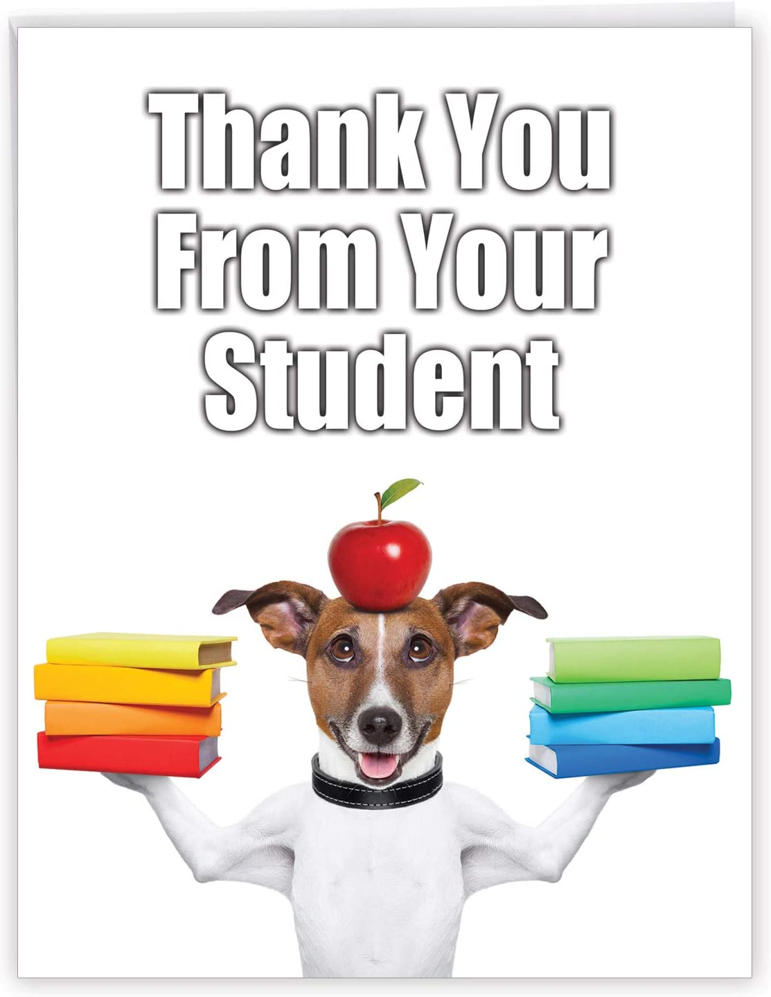 Jumbo Funny Thank You Gift Card: Thank You from Your Student or Class with Dog and Apple (Extra Large Version: 8.5 x 11 with White Envelope) #J3616