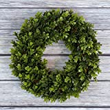 This Pure Garden Boxwood Wreath is a modern take on the traditional seasonal decor. This 14 inch round artificial boxwood wreath will stay green for years to come with zero maintenance. Ultraviolet protected to prevent fading. Features boxwoo...