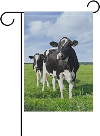 Amazon Com Chen Miranda Cattle In Green Meadow Double Sided Polyester House Home Flag Banner For Party Home Outdoor Decor 28x40 Inch Garden Outdoor