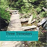 Three Trimesters ... A Journal to Motherhood, Carmen Borthwick, 1436343232