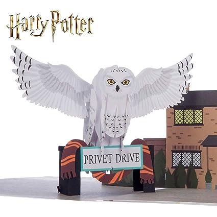 Tarjeta de Harry Potter - Hedwig Pop Up | Incluye un sobre ...