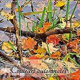 Couleurs Automnales 2017: Promenade Dans Le Quebec Automnal (Calvendo Places) (French Edition)