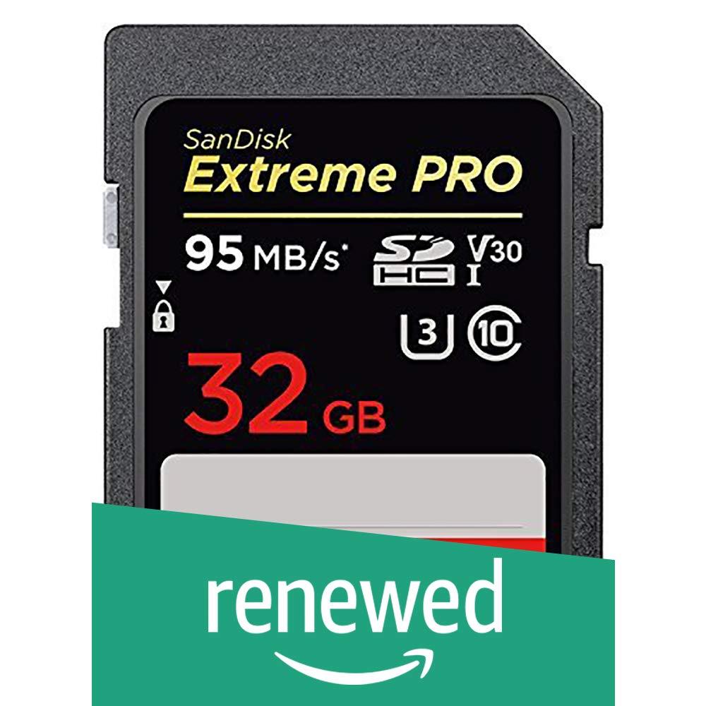 SanDisk Extreme Pro - Tarjeta de Memoria SDHC (32 GB, hasta 95 MB ...