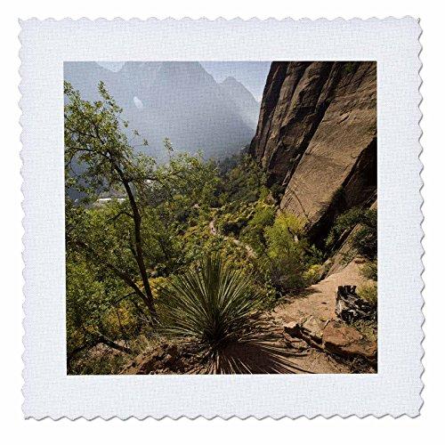 3dRose qs_94730_1 Angels Landing Trail, Zion National Park, Utah-Us45 Dpb0014-Douglas Peebles-Quilt Square, 10 by 10-Inch