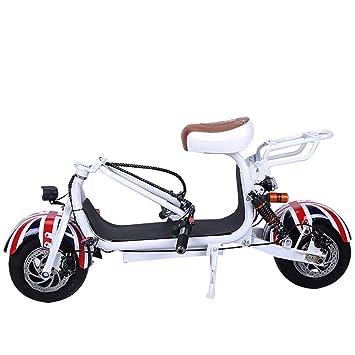 Amazon.com: WWWNYY - Pedal eléctrico para adulto, 48 V ...