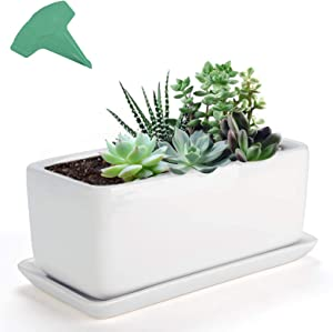 GROWNEER 10 Inches Rectangular White Ceramic Succulent Planter Pot Window Box Flower Pots with 15 Pcs Plant Labels, Porcelain Planters with Saucer for Garden Patio Yard Bedroom Living Room