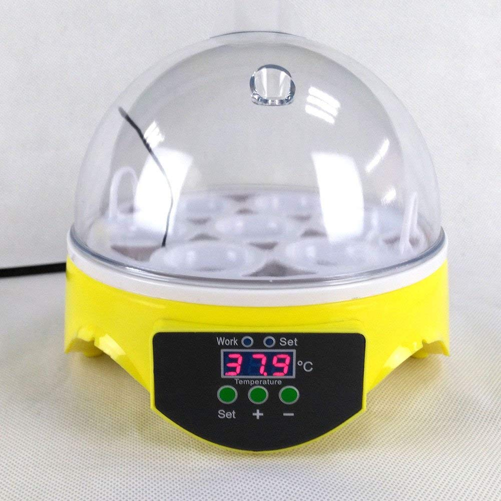 Automatic Egg Incubator Hatcher, 7 Eggs Turning Temperature Control Small Poultry Hatcher for Chickens Ducks Goose Birds Family Use