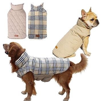 Petilleur Abrigo Perro Invierno Chaqueta Ropa para Perros Pequeños Medianos y Grandes, Doble Cara Vestir (XL, Beige): Amazon.es: Productos para mascotas