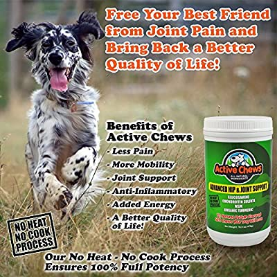 Active Chews Premium Hip and Joint Dog Treats, Glucosamine for Dogs, Chondroitin MSM and Turmeric for Dogs, Extra Strength Supplement with Arthritis Pain Relief for Dogs