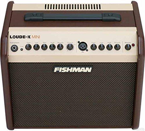Fishman Loudbox Mini PRO-LBX-500 Acoustic Instrument Amplifier w/Bonus Dunlop DTC1 Tuner 605609107190 -