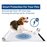 KEK Scat Mat for Cats and Dogs   Training Mat for