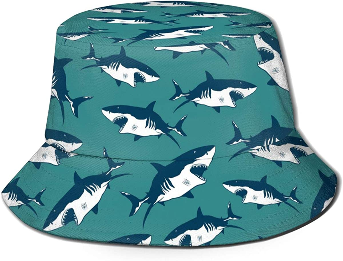 The Best Shark Dig Kit