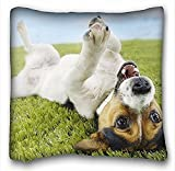 Best My Honey Pillow The Grandparent Gift Dog Picture Frames - My Honey Pillow Pillow Cover dog Jack Russell Review
