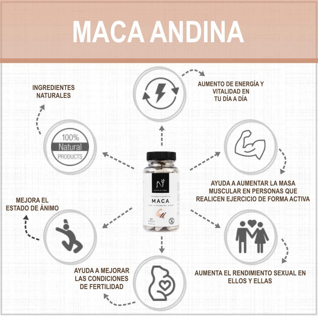 Maca. Alta concentración de maca andina pura.200mg(25:1) x2cap día, 5000mg. Aumenta el nivel de testosterona. Potenciador muscular. Aumenta los ...