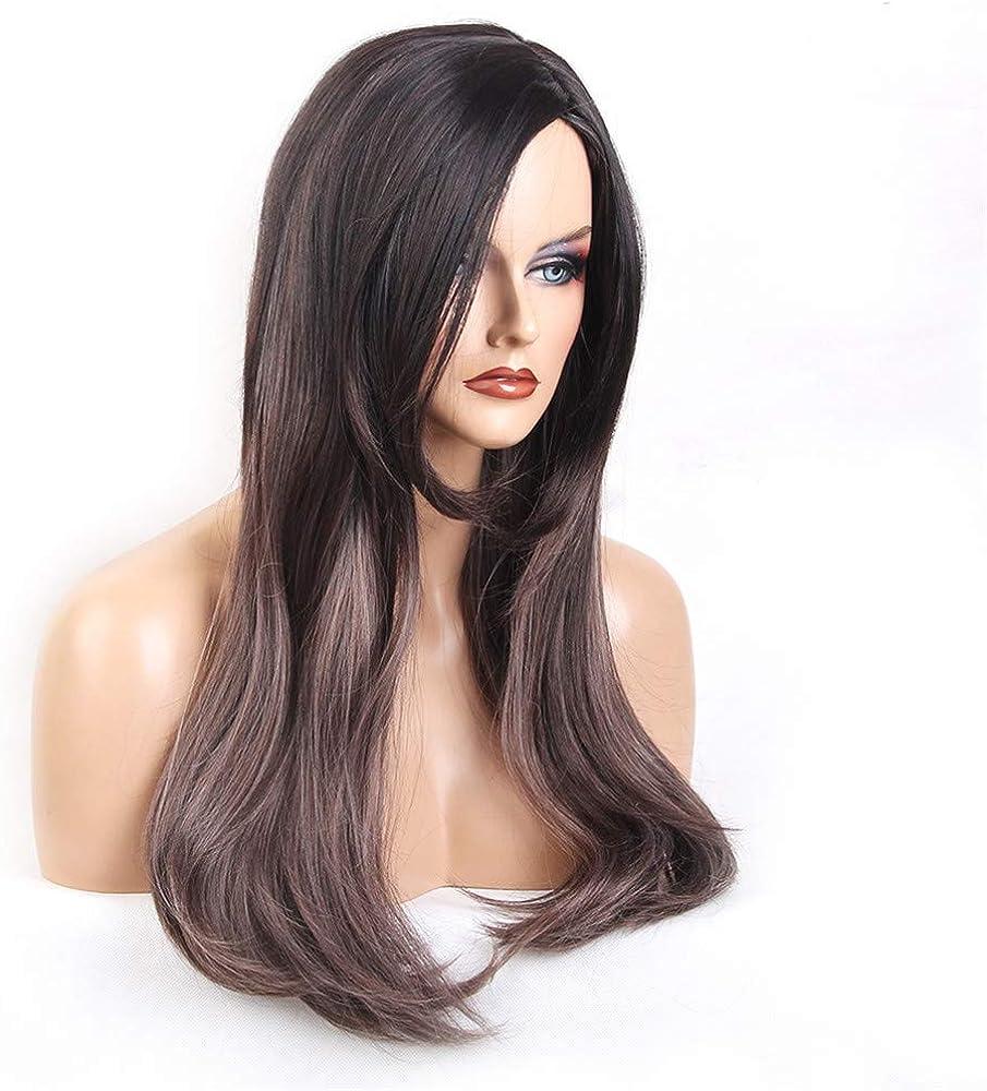 Sencillo Vida Pelucas Mujer Recta Largo Postizos Señora Pelo Wigs ...
