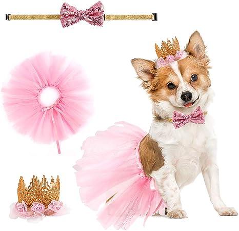 Hund Spitze Prinzessin Kleid Hund Fr/ühling Sommer Kleid Hund Tutu Kleid Haustier Sommer Party Rock f/ür kleine Hunde M/ädchen White Bowknot Puppy Dogs Nachgeahmte Seide Gaze Tutu Kleid