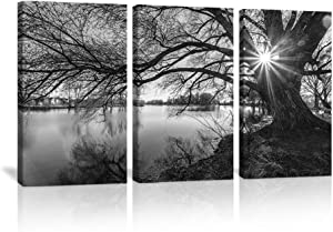 KALAWA Black Tree Wall Art Lakeside Pictures Print on Canvas Lake Scenery Artwork Black and White Big Tree Photo Contemporary Decor Nature Scenery Wall Decor for Home Framed Ready to Hang