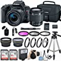 Canon EOS Rebel SL2 Camera with EF-S 18-55mm f/4-5.6 is STM Lens & + More Accessories