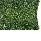 "Pet Zen Garden 612409784032 PZG 1"" Artificial Grass Patch Drainage Holes & Rubber Backing"