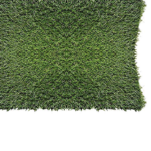 PZG 1-inch Artificial Grass Patch w/ Drainage Holes & Rubber Backing | 4-Tone Realistic Synthetic Grass Mat | Heavy & Soft Pet Turf | Lead-Free Fake Grass for Dogs or Outdoor Decor | Size: 24