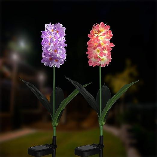 XLUX - Lámpara solar para jardín, lámpara de jardín con luces LED de jacinto, luces decorativas para el jardín, césped, terraza, camino de campo, 2 unidades (lila y rosa): Amazon.es: Jardín
