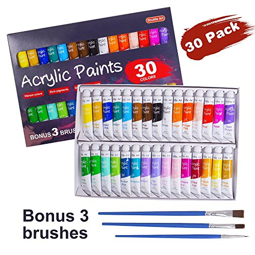 Acrylic Paint Set, Shuttle Art 30 x12ml Tubes Artist Quality Non Toxic Rich Pigments Colors Great For Kids Adults Professional Painting on Canvas Wood Clay Fabric Ceramic Crafts (Acrylic Art Canvas)