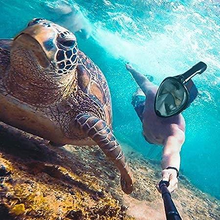 full face mask, snorkeling, underwater