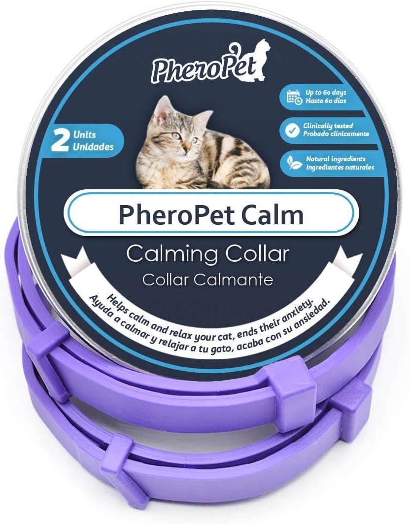collar con feromonas para calmar estrés en gatos