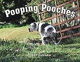 2017 Pooping