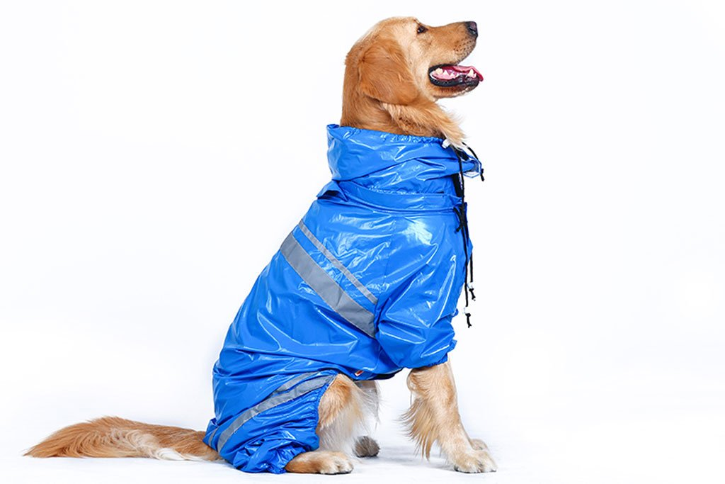 bluee 3XL bluee 3XL FXNN Pet Clothes Easy to wear, Safe, Reflective, bluee Waterproof Raincoat (color   bluee, Size   3XL)