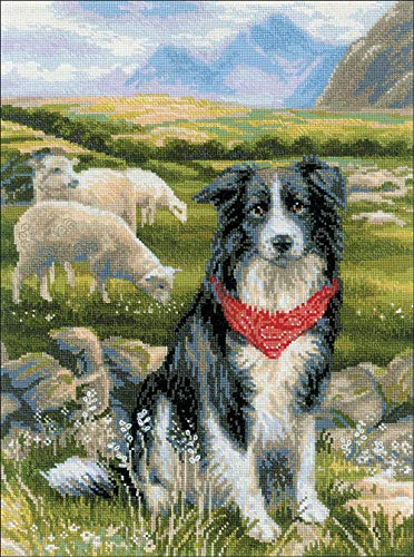RIOLIS 1767 - Border Collie - Cross Counted Stitch Kit 11.75