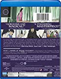 The Tale of the Princess Kaguya (Blu-ray + DVD)