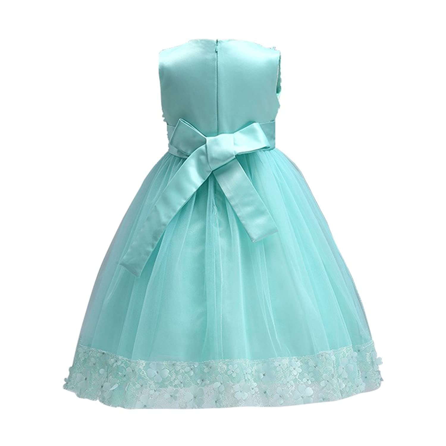 Amazon.com: Weileenice 1-14 Years Big/Little Girl Flower Lace A-line ...