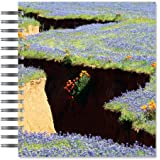 ECOeverywhere Lupine and Poppies Picture Photo Album, 18 Pages, Holds 72 Photos, 7.75 x 8.75 Inches, Multicolored (PA12127)