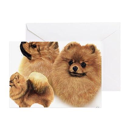 Amazoncom Cafepress Pomeranian Multi Greeting Card Note Card