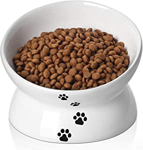 Y YHY Cat Bowl,Raised Cat Food Bowls Anti Vomiting,Tilted Elevated Cat Bowl,Ceramic Pet Food Bowl for Flat-Faced Cats,Small Dogs,Protect Pet's Spine,Dishwasher Safe